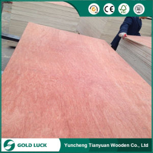 2-25mm Bintangor/Okoume Veneered Commercial Plywood pictures & photos
