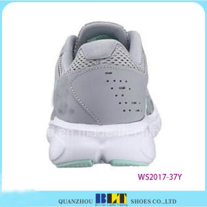 Colourful Training Sport Shoes with Shoeslace pictures & photos