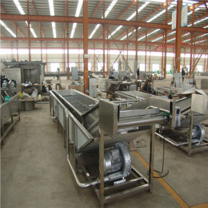 Electrical Automatic Commercial Vegetable Washer pictures & photos