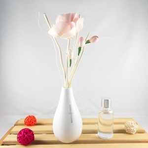 Aromatic Reed Diffuser pictures & photos