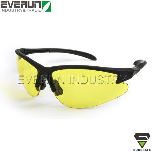 PC Lens Fashion Eyewear Glasses Safety (ER9313) pictures & photos