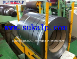 Hot Dipped Galvanized Steel Strip Coil pictures & photos