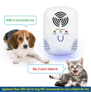 Ultrasonic Electronic Reject Insect Indoor Pest Bug Control Repeller Best Pest Repeller for Mice/Mouse/Rat pictures & photos
