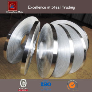 Ba Finish Stainless Steel Coils (CZ-C86) pictures & photos