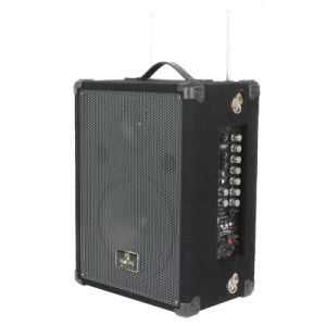 Portable PA Speaker with SD, USB and Two Handheld Mics