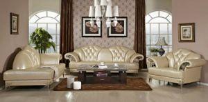 1003 European Modern Leather Sofa pictures & photos
