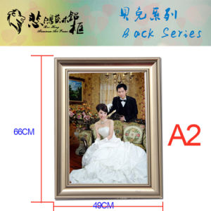 H14 A2 Snap Aluminum Picture Frame Photo Frame pictures & photos