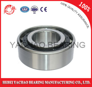 Cylindrical Roller Bearing (N229 Nj229 NF229 Nup229 Nu229) pictures & photos