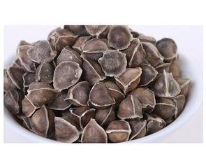 Moringa Seed Extract pictures & photos