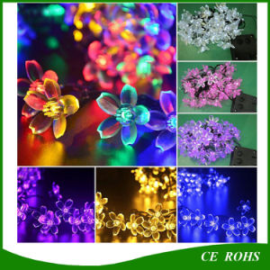 Holiday Lighting Solar 20 LEDs Outdoor Cherry Christams String Lights pictures & photos