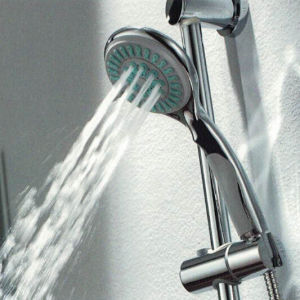 Bathroom Accessories Chrome Hand Shower Head Cheap pictures & photos