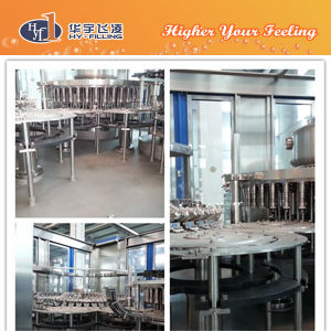 Hy-Filling Fruit Particle Hot Filling Equipment pictures & photos