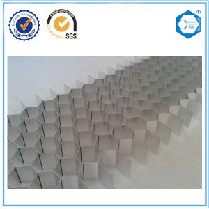 ISO Certificate Aluminum Honeycomb Core for Door Filling Building Material pictures & photos
