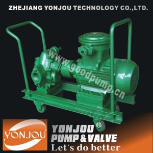 Electric Oil Transfer Pump pictures & photos
