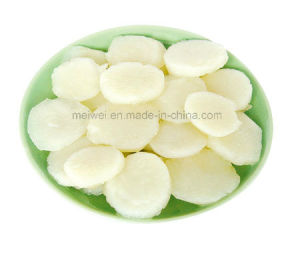 Vegetable Canned Water Chestnut with Best Price pictures & photos