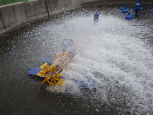 Ten Impeller Floating Surface Pond Aerator pictures & photos
