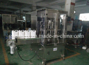 Auto Anti-Freeze Liquid Bottle Filling Machine with 2-Nozzle Rotor-Pump Filling pictures & photos