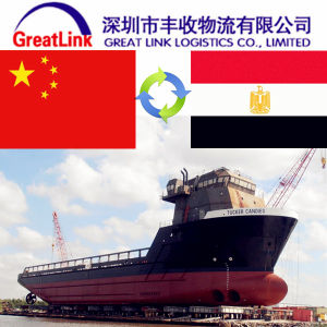 FCL/LCL Sea Freight From Shenzhen/Shanghai/Hongking to Egypt