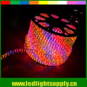 5 Wire Rgby DMX Controlled Rope Lighting Flat 144 LED Chasing Strip