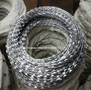 High Tensile Sharp CBT-65 Single Coil Concertina Razor Barbed Wire pictures & photos