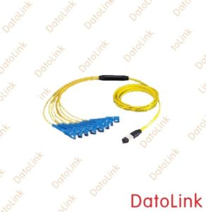 MPO Fiber Optic Patch Cord pictures & photos