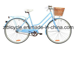 26 Inch New Design Hot Sale City Bike (ZL-CT-050) pictures & photos