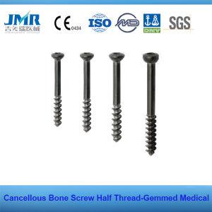 Hb 6.5mm 4.0mm Half Thread Cancelouus Bone Screw pictures & photos