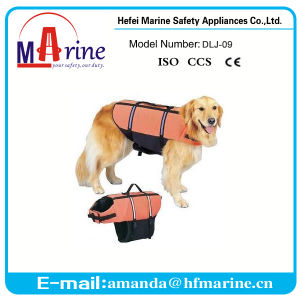 Best Sale Dog Jacket for Swimming pictures & photos