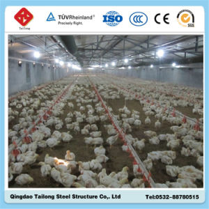 High Qualified Prefab Steel Structure Poultry House for Sale pictures & photos