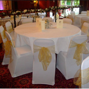 Cheap Price 100% Polyester White Table Cloth (DPR2123) pictures & photos