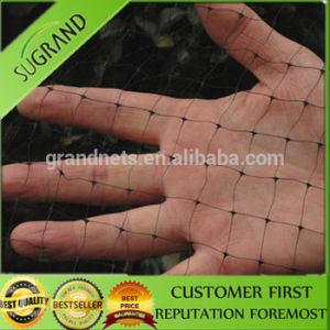 Vineyard Polyethylene Netting Fruit Garden Anti Bird Net pictures & photos
