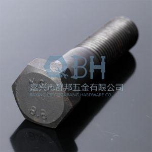 Hex Bolts (DIN931 M5-M56 Cl. 4.8/6.8/8.8/10.9) pictures & photos