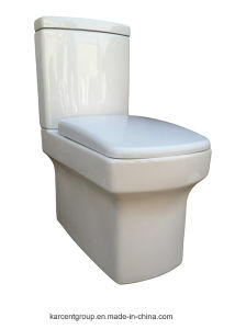 Two Piece Ceramic Toilet Washdown Toilet Water Closet Wc 1094 pictures & photos