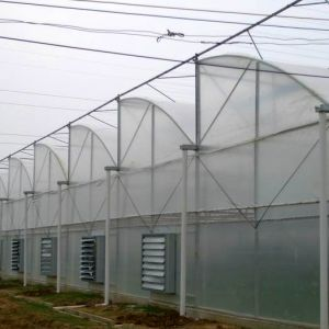 Low Cost Agriculture Sawtooth Film Greenhouses for Sale From China pictures & photos