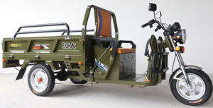 Three Wheel Pasenager Tricycle pictures & photos