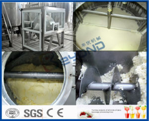 Butter Making Equipment (500kg-20000kg/D) pictures & photos