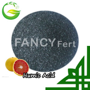 100% Water Soluble Humic Star Powder pictures & photos