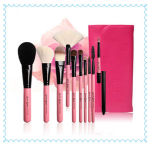 Cosmetics Brush Hot Selling Makeup Brush pictures & photos
