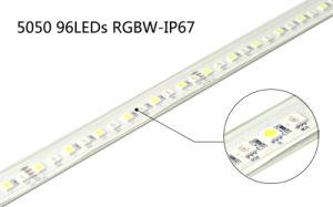 Unique 13.5mm SMD96 LEDs/M 5050RGBW Flexible Strip pictures & photos