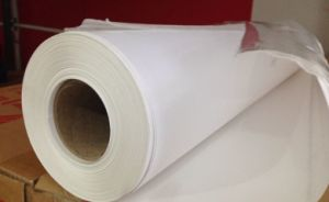 Glossy PP Synthetic Paper for Indoor Printing/ Advertising pictures & photos