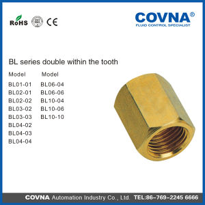 Bl Series Double Within The Tooth Brass Fittings pictures & photos
