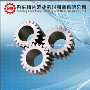 Customized Stainless Steel/Brass Spur Gear