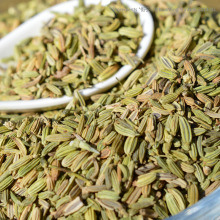 New Crop Fennel Seeds (green: 85% and up) pictures & photos