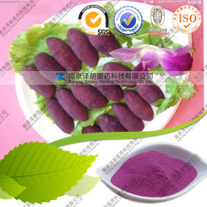 Natural Pigment Purple Sweet Potato Extract pictures & photos
