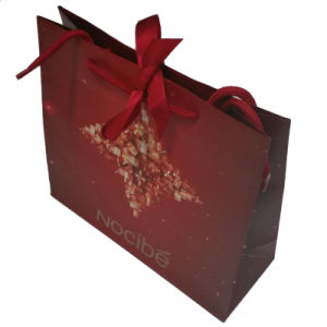 Paper Shopping Bag with High Quality for Packing pictures & photos