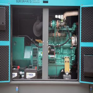 Factory Direct Sale 100kVA Super Silent Generator with Smartgen ATS pictures & photos