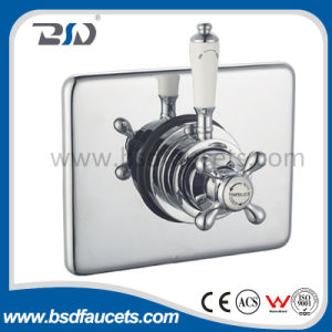 Concealed&Exposed Thermostatic Shower Valve with Rectangular Plate Ceramic Handle pictures & photos