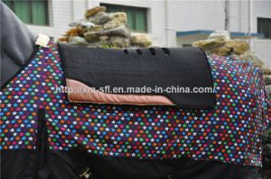 Breathability Western Saddle Pad Wholesale pictures & photos