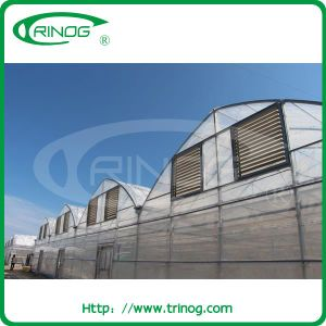 Multi-Span Film Greenhouse in steel frame structure pictures & photos