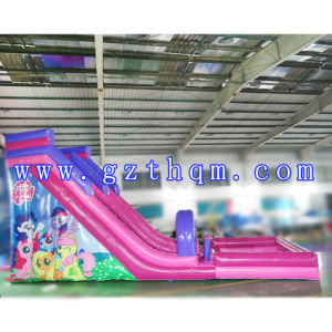 The Shark Pool Inflatable Water Slides/Inflatable Long Water Slide/ pictures & photos